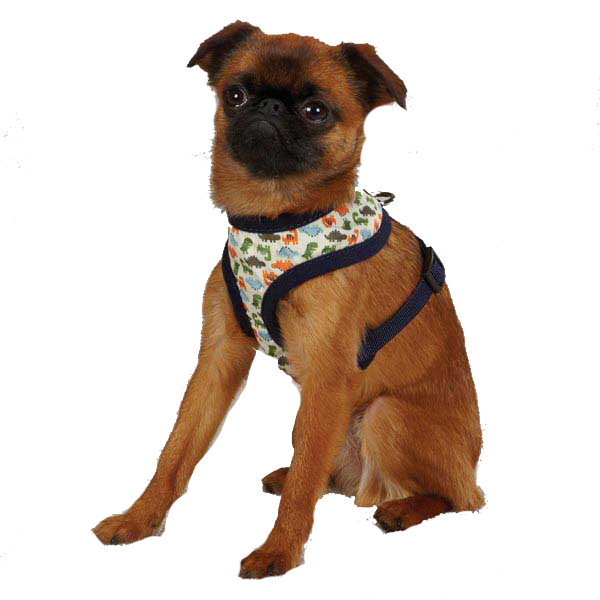 Dino Dog Harness - Navy