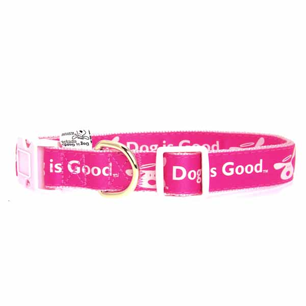 Dog is Good Bolo Dog Collar - Raspberry Sorbet