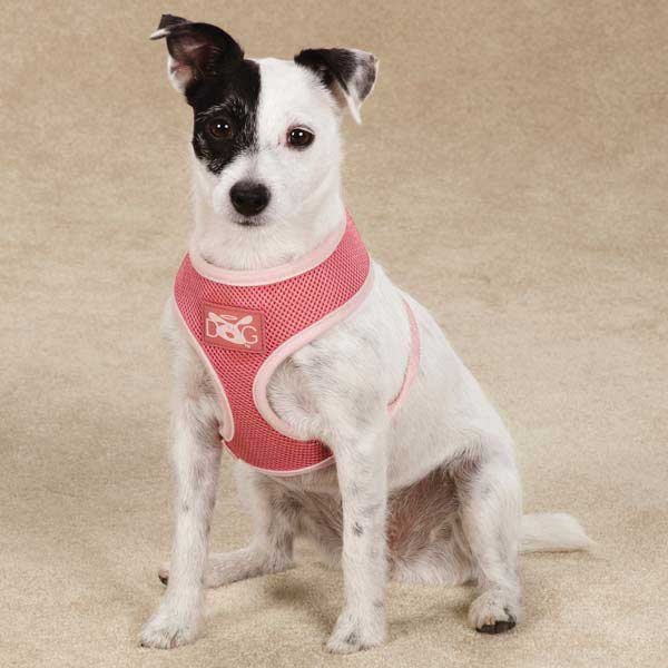 Dog is Good Halo Dog Harness - Pink