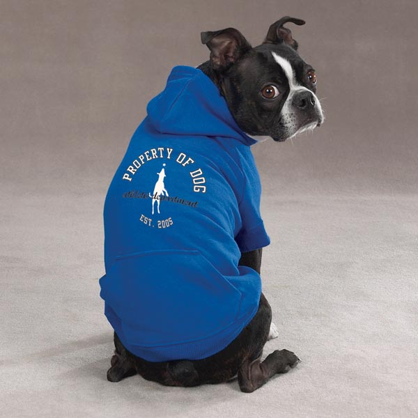 Dog is Good Solid Dog Hoodie - Sky Diver Blue