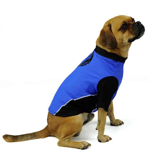 Dog Rashguards by Body Glove - Royal/Black