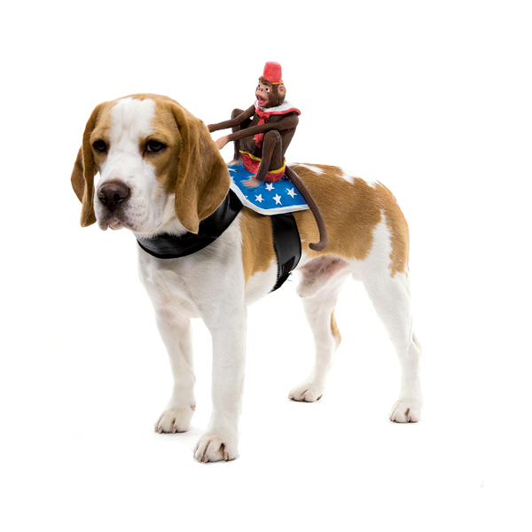 Dog Riders Harness Halloween Costume - Circus Monkey