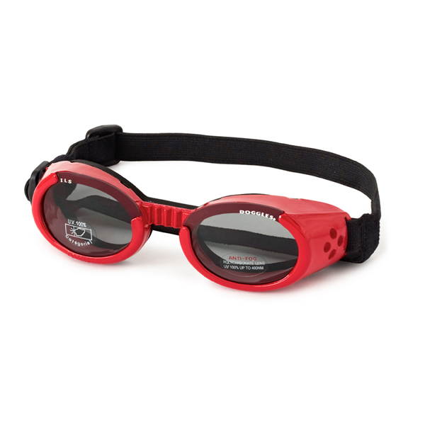 Doggles - Shiny Red Frame with Smoke Lens