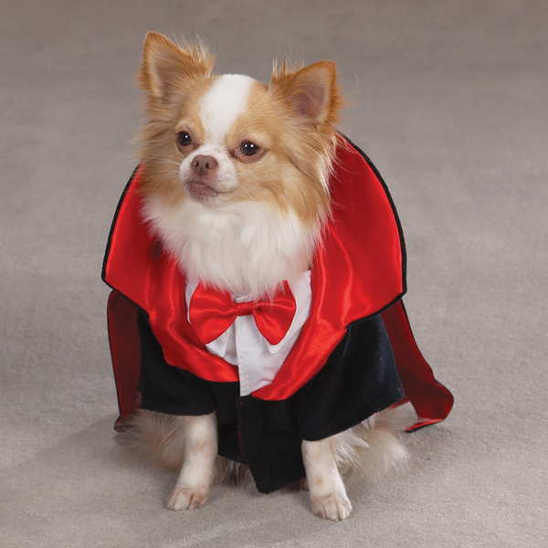Dogicula Costumes for Dogs by Casual Canine