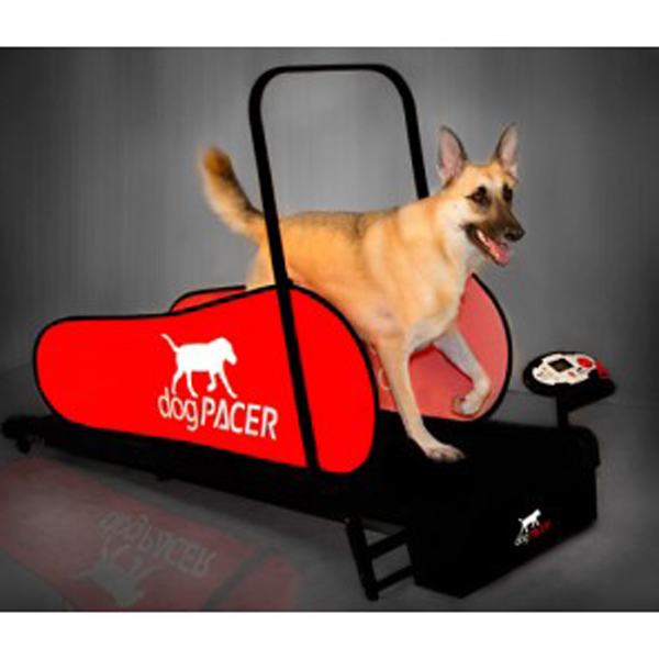 DogPacer Dog Treadmill - LF3.1 - Includes Shipping
