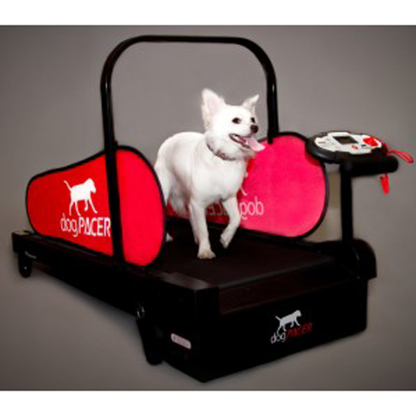 DogPacer Dog Treadmill - Minipacer - Includes Shipping