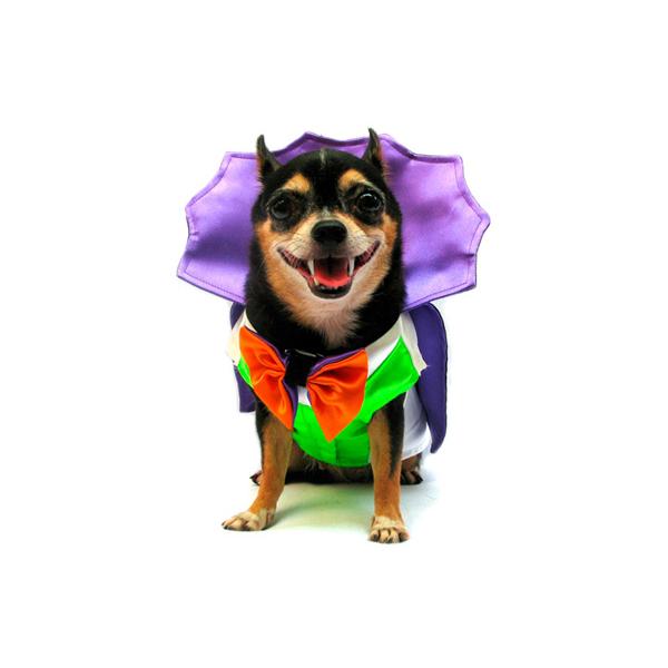 Dogula Halloween Dog Costume