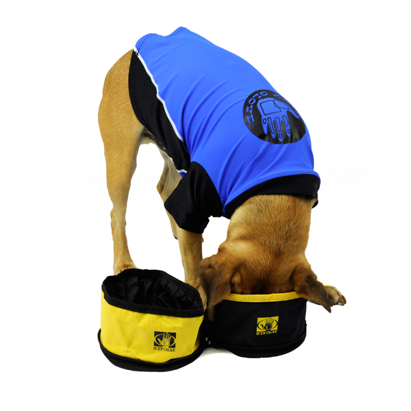 Body Glove Double Dog Bowl Travel Set