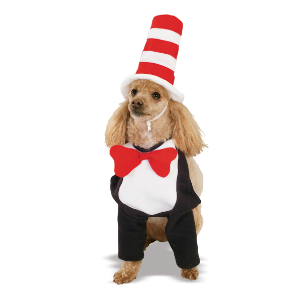 how to make a homemade cat in the hat costume