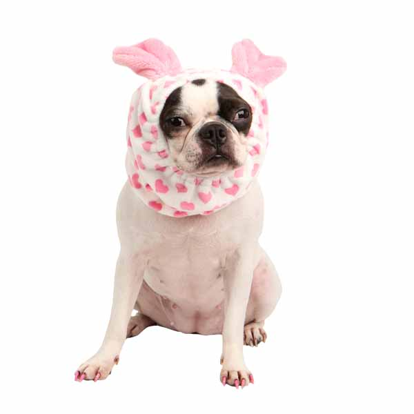 Dreamy Dog Snood by Pinkaholic - Ivory