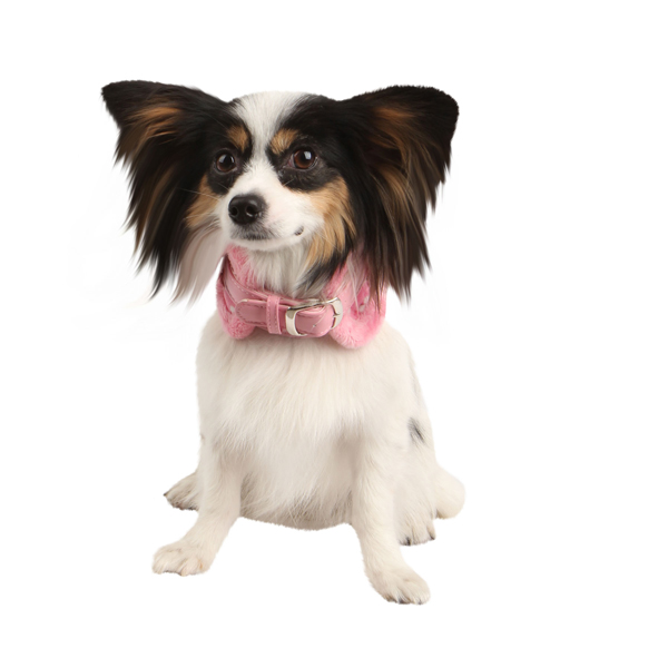 Dreamy Neckguard Dog Collar by Pinkaholic - Pink