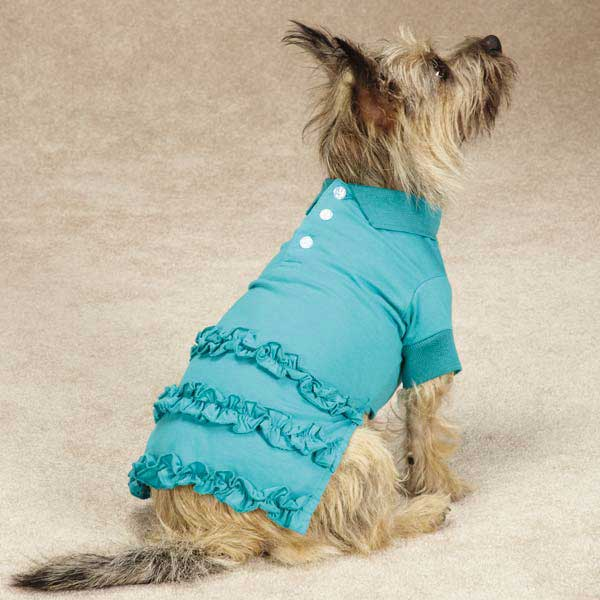 Blooming Brights Polo Dog Dress - Turquoise