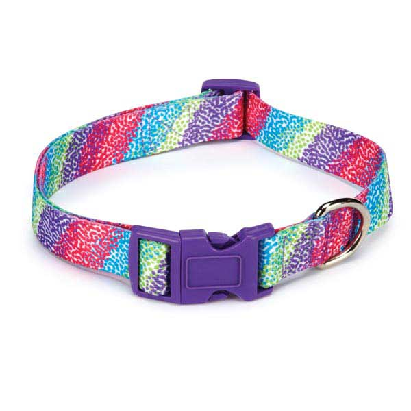 East Side Collection Confetti Print Dog Collar - Raspberry