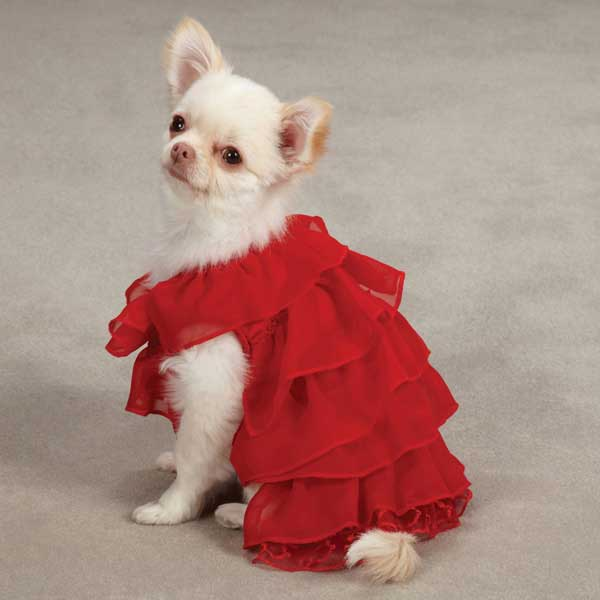 East Side Collection Ruffle Dog Dress - Red