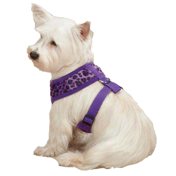 Vibrant Leopard Dog Harness - Ultra Violet