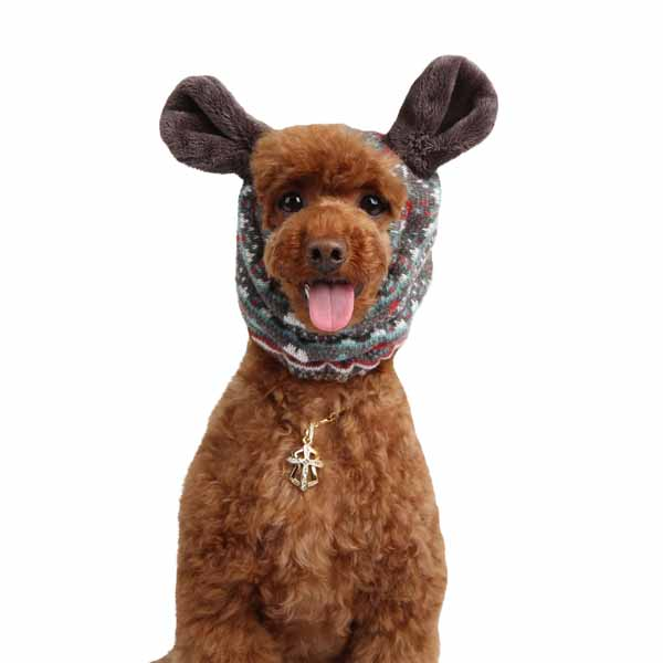 Express Dog Snood by Puppia - Gray