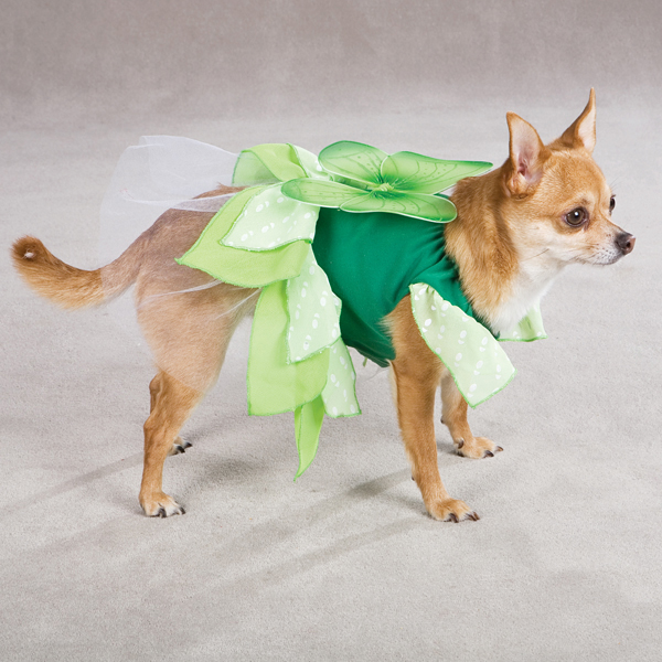 Fairy Tails Dog Costume by Zack & Zoey - Green