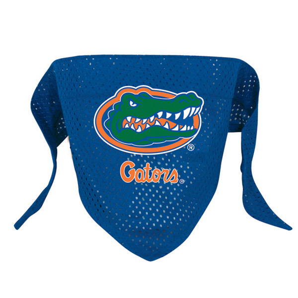Florida Gators Mesh Dog Bandana
