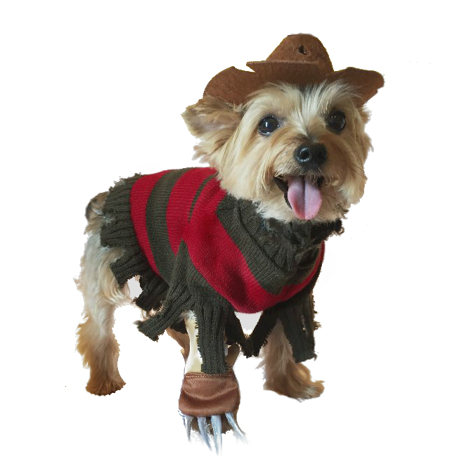Good Dog Costumes