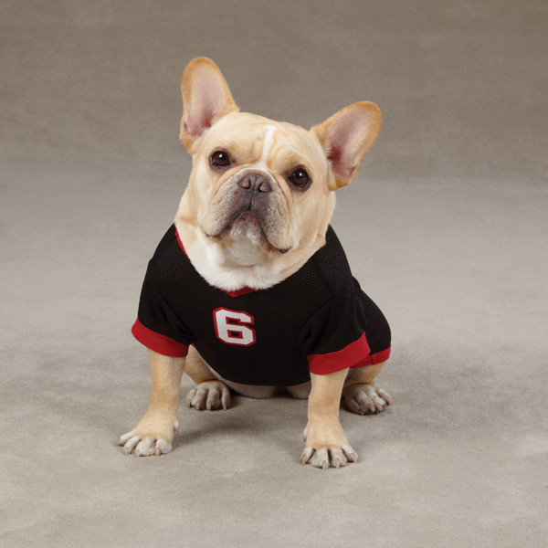 Game Day Dog Jersey - Black