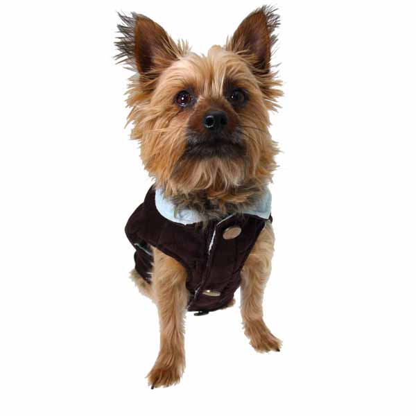 Gemini Reversible Vest by Dogo - Brown and Blue
