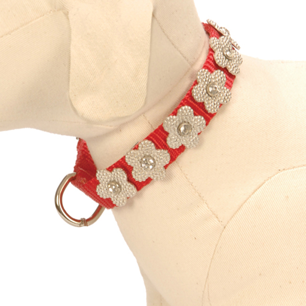 Gracie Silver on Red Daisy Dog Collar
