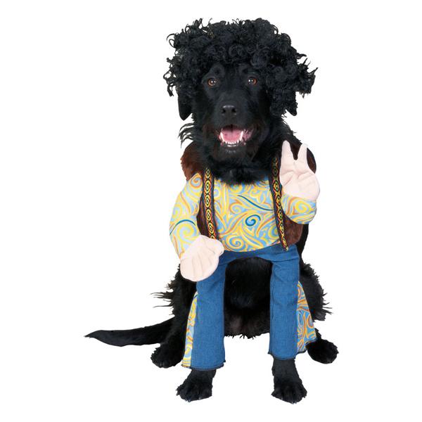 Groovy Dog Halloween Costume