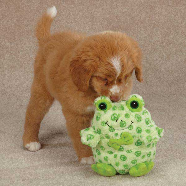 Grriggles Bowtie Buddies Dog Toy - Frog