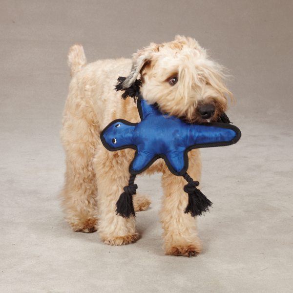 Grriggles Burlies Tough Dog Toy - Lizard