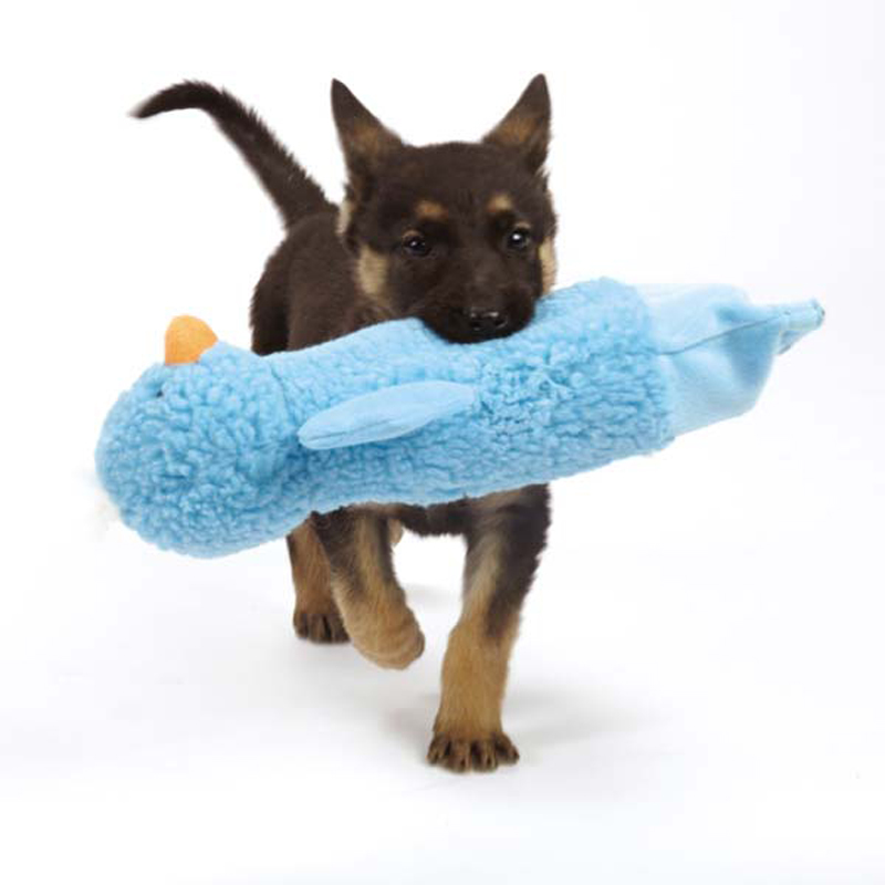 Grriggles Crinkle Duckies Dog Toy - Bluebird