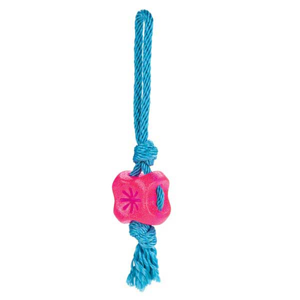 Grriggles FUNdamentals Treat Tugs Dog Toy - Raspberry