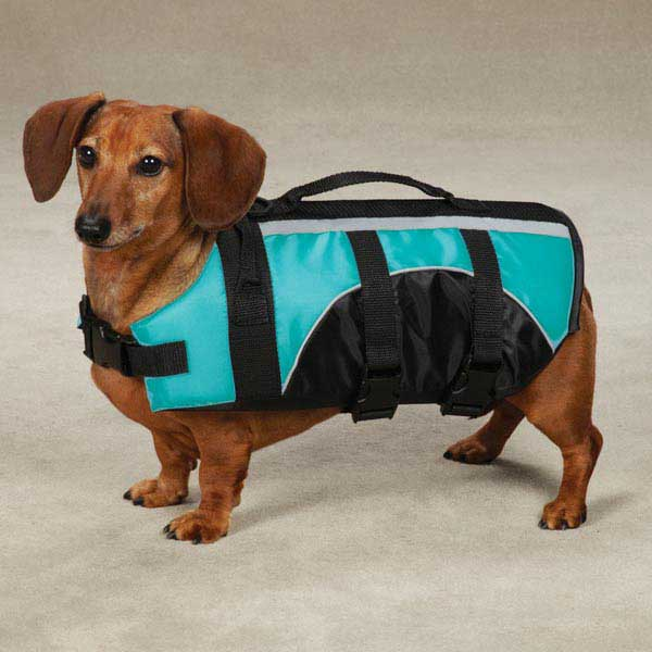 Guardian Gear Brite Pet Preserver - Bluebird