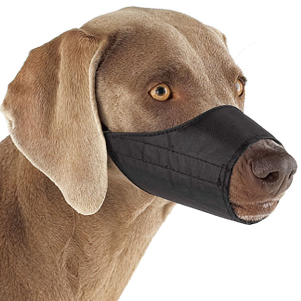 Guardian Gear Lined Dog Muzzle - Black