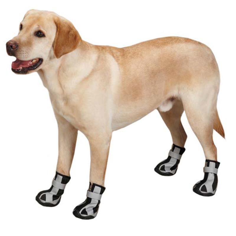 Guardian gear nordic trek dog boots gray baxterboo