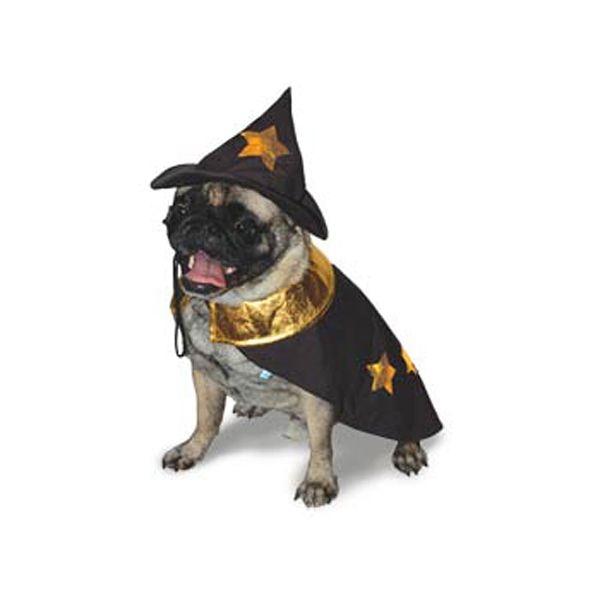 Harry Pawter Dog Halloween Costume by Dogo