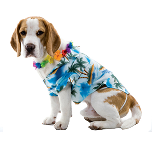 Hawaiian Halloween Dog Costume by Paper Magic