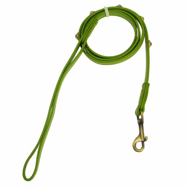 Hematite Pebbies Dog Leash - Green