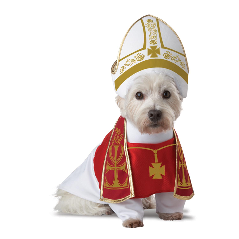 Holy Hound Dog Costume | BaxterBoo
