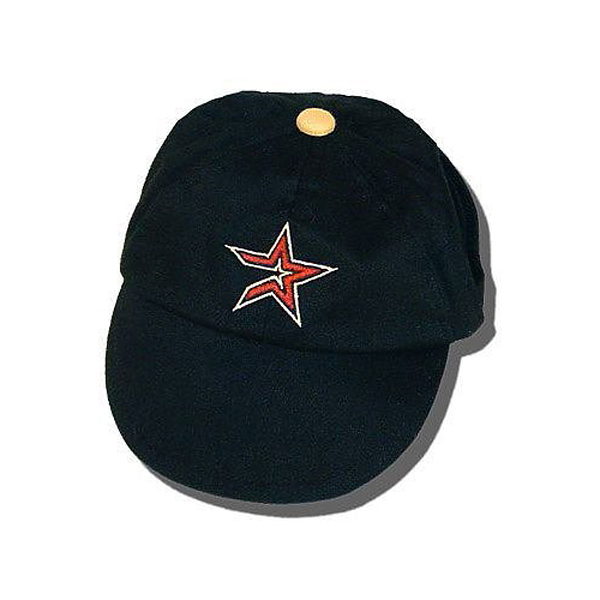Houston Astros Dog Hat