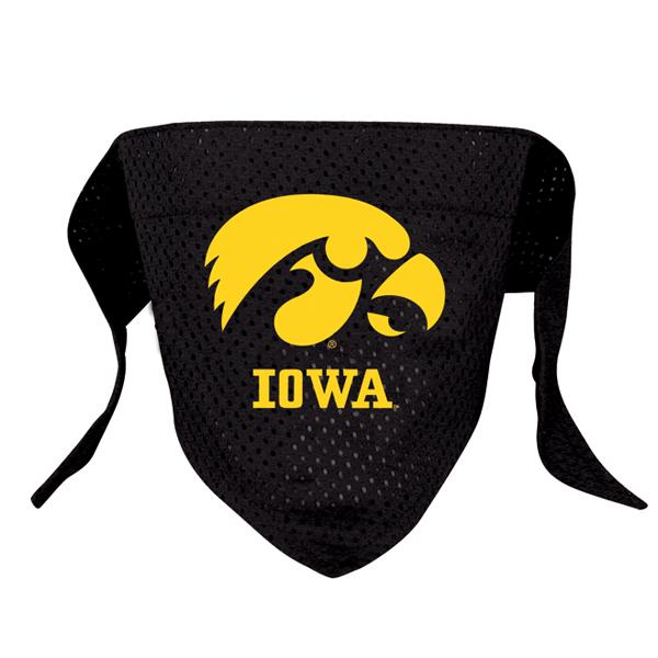 Iowa Hawkeyes Mesh Dog Bandana
