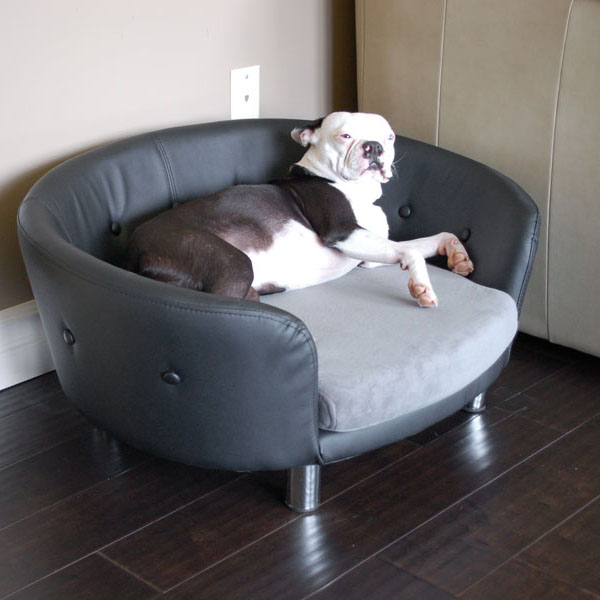 Isidore Dog Couch BaxterBoo