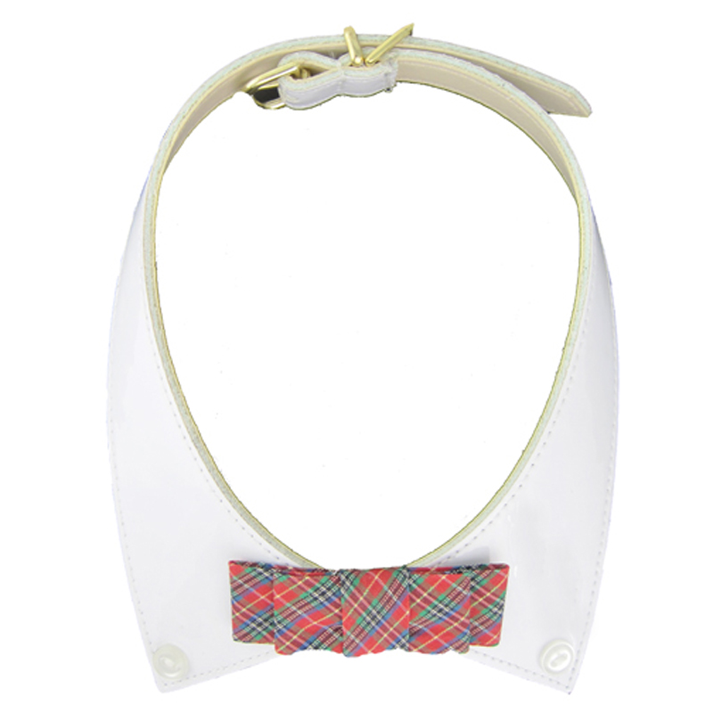 Ivy League Bowtie Collar