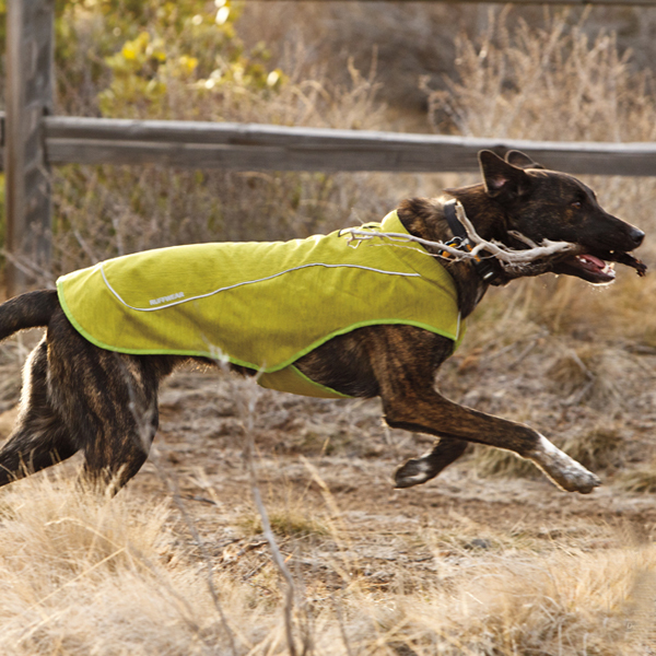 K-9 Overcoat Utility Dog Jacket by RuffWear - Forest Green