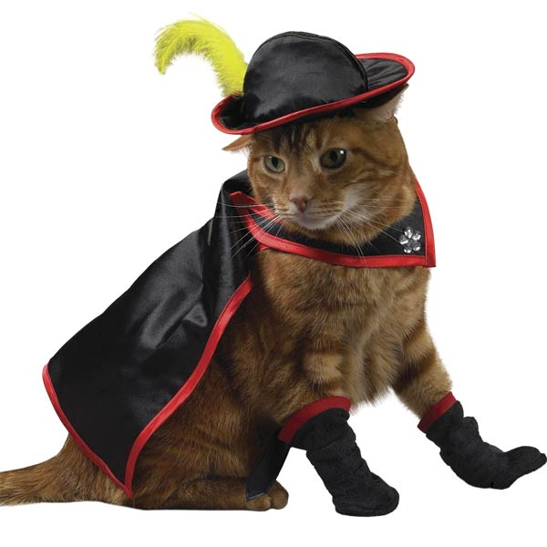 kitty crusader   puss amp boots cat costume by savvy tabby baxterboo