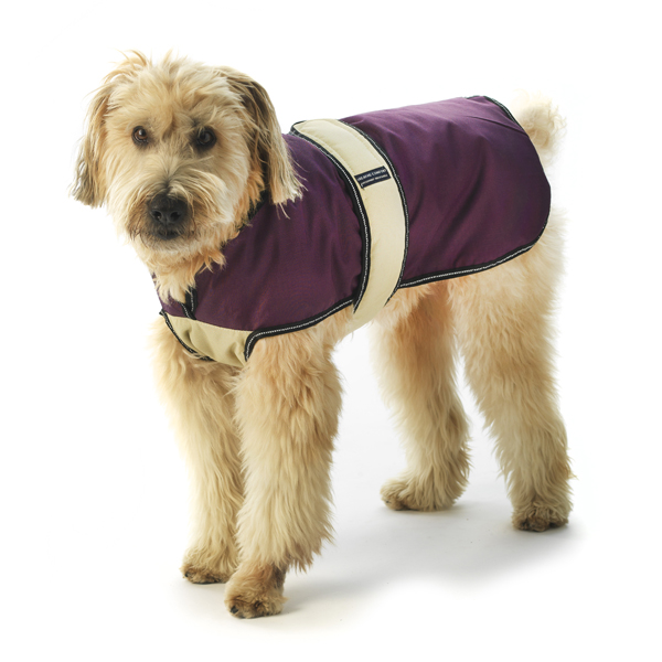 Kodiak Dog Coat - Plum & Tan
