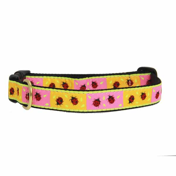 Ladybug Dog Collar by Up Country