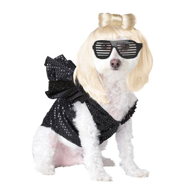 Pop Sensation Dog Costume