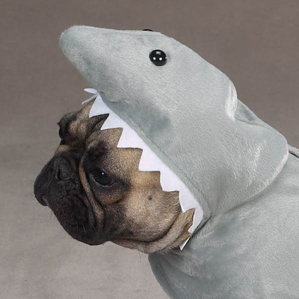 Dog Shark Halloween Costume Land Shark Costume For Dogs by