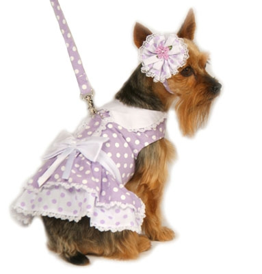Lavender Polka Dot Harness Dress w/ Hat and Leash