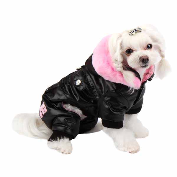 Love Party Dog Jumpsuit by Pinkaholic - Black